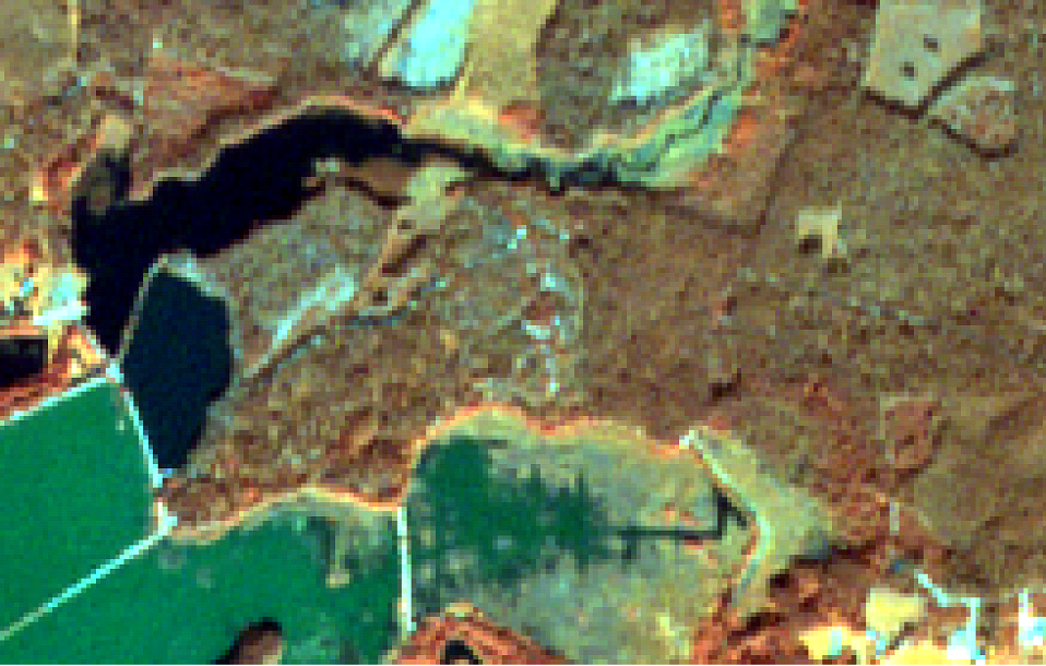Initial Sentinel-2 image from bands 8,3,2 / Location: 56.99°N, 24.37°E